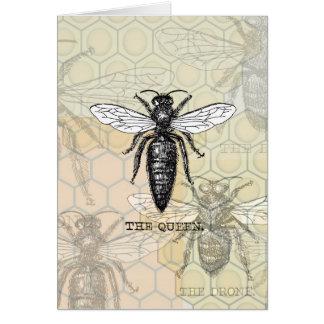 Cartão Ilustração bonita do rosa da abelha de rainha do
