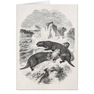 Cartão Ilustração da lontra dos 1800s das lontras de mar