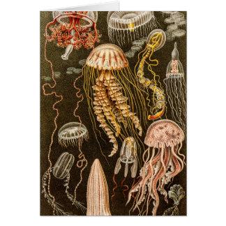 Cartão Ilustração das medusas da antiguidade das medusa
