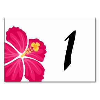 Cartão Ilustrações de Floower do hibiscus