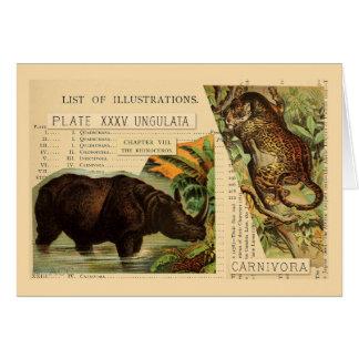 Cartão Ilustrações do animal de Jaguar do rinoceronte