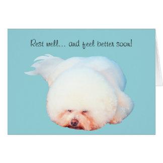 Cartão ilustrado Frise do sono Bichon