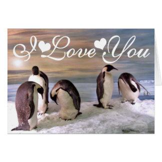 Cartão Imagem da foto dos pinguins de rei eu te amo
