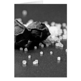 Cartão Imagem macro da pimenta de sal no estúdio