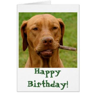 Cartão IMG_6106Fo'get sobre ele! , Feliz aniversario!
