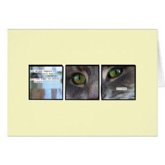 Cartão Império do gato