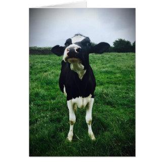 Cartão Impressão bonito da vitela do animal de fazenda da