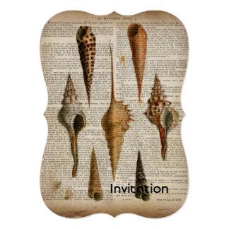 Cartão impressão botânico do seashell francês do vintage