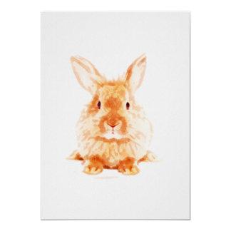 Cartão Impressão do berçário do coelho do bebê em 5x7