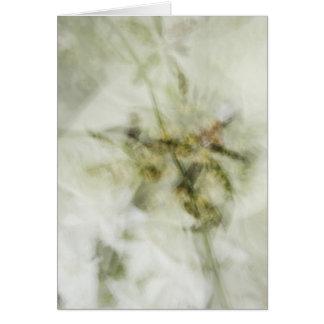 Cartão impression_of_orchids