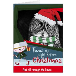 Cartão impressionante do Natal da coruja