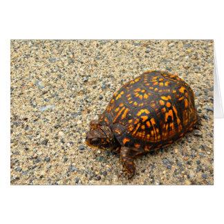 Cartão Incentivo da tartaruga de caixa