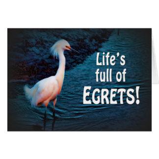 Cartão INCENTIVO - NÃO LAMENTE - MOVA-SE EM (os egrets)
