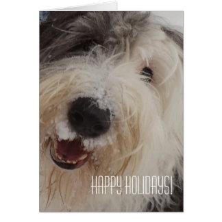 Cartão inglês velho do Sheepdog - boas festas!
