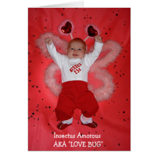 Cartão Inseto do amor
