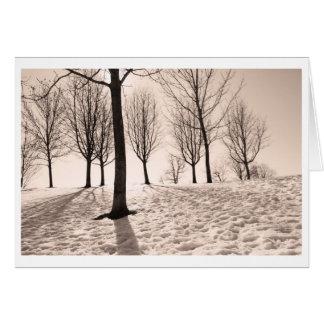 Cartão inverno da despesa