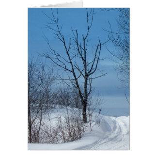 Cartão Inverno de Maine