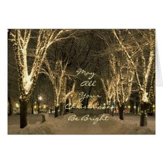 Cartão Inverno em Boston - cena do parque