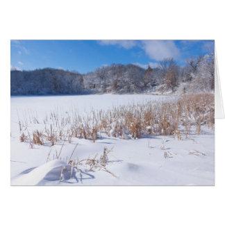 Cartão Inverno nevado da lagoa de Marthaler cénico