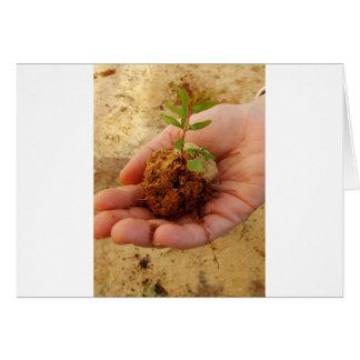 Cartão Investimento para o crescimento