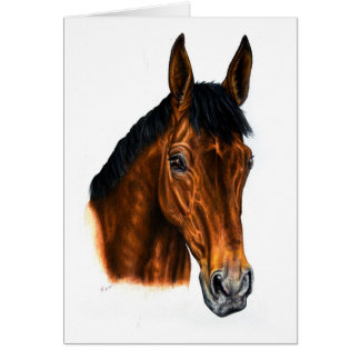 Cartão irlandês do cavalo de baía