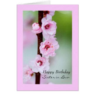 Cartão Irmã do feliz aniversario na lei