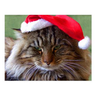 Cartão irritadiço do gato do Natal