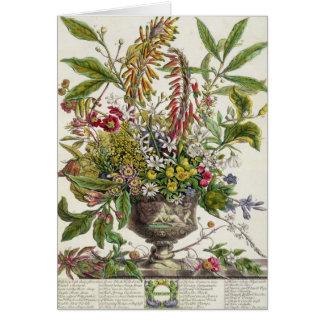 Cartão Janeiro, do ` doze meses das flores