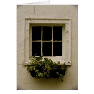 Cartão Janela resistida com plantas