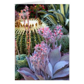 Cartão Jardim colorido do Succulent