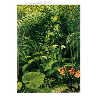Cartão Jardim de Cala