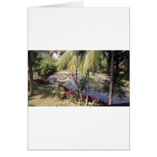 Cartão Jardim de Goa India