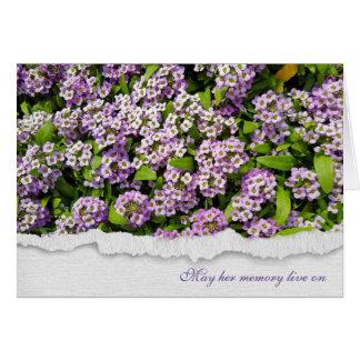 Cartão jardim simpatia-roxo do alyssum