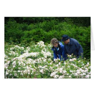Cartão Jim & Betsy, jardim de Savill
