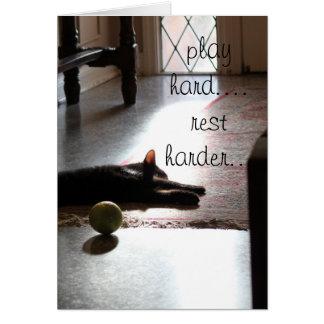 Cartão jogue um gatinho mais duro do sono do resto do