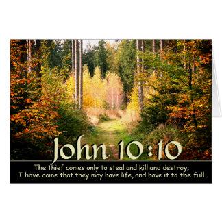 Cartão John 10 verso de 10 bíblias, trajeto de floresta