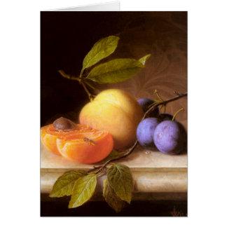 Cartão Joseph Peter Wilms - pêssegos e ameixas