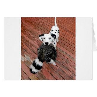 Cartão Kevin o Dalmatian