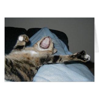 Cartão Kittie de bocejo