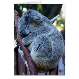 Cartão Koala da torta de Cutie