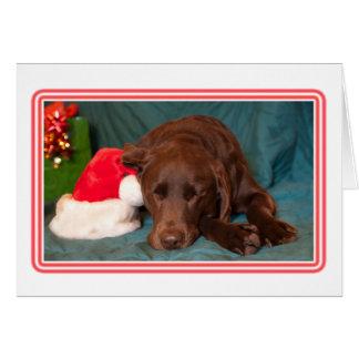 Cartão Laboratório quadro do chocolate do sono com a foto