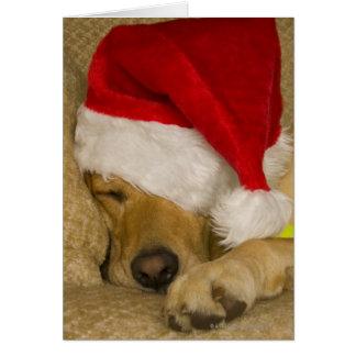 Cartão Labrador que veste um chapéu do papai noel do
