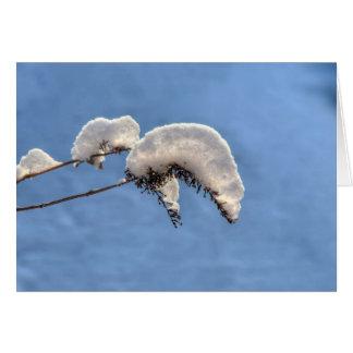 Cartão Lagartas da neve