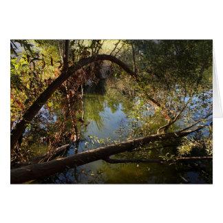 Cartão Lago 4 park da garganta de Franklin