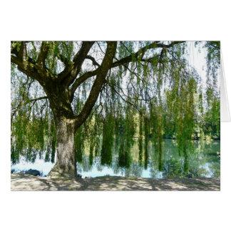 Cartão Lagoa através da árvore de salgueiro Weeping