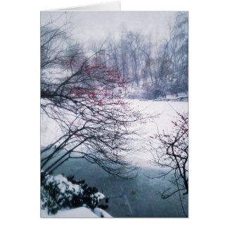 Cartão Lagoa nevado no Central Park
