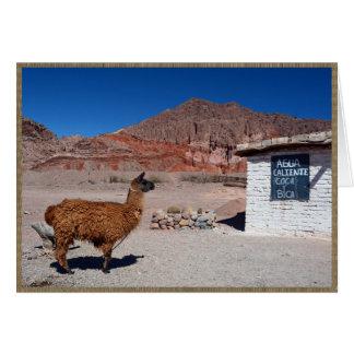 Cartão Lama no Quebrada de Cafayate, Argentina