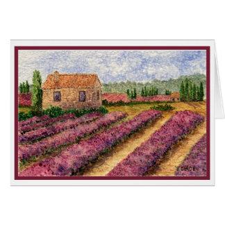 Cartão Lavendar Fieldsin Provence
