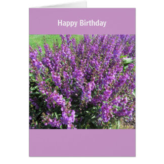 Cartão Lavendar floresce desejos do aniversário