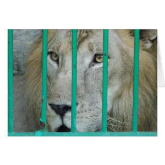 Cartão Leão majestoso
